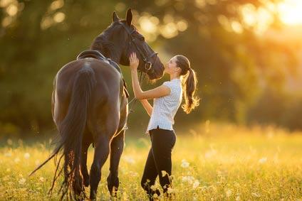 Tierhalter Krankenversicherung OP Schutz für Pferde und Hunde